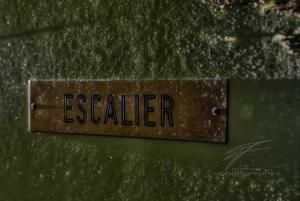 Escalier (Stairs)